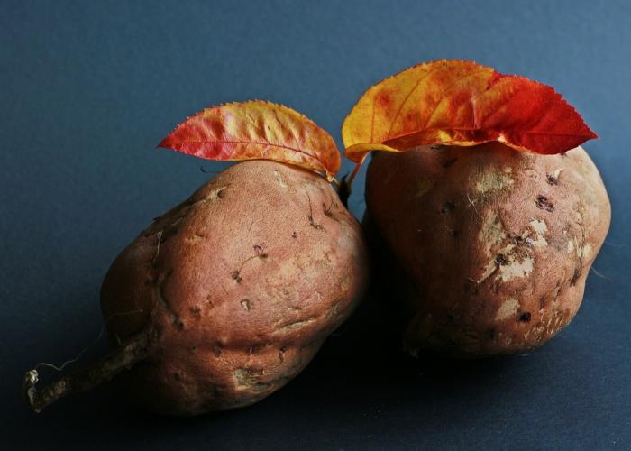 Patate douce et fertilité